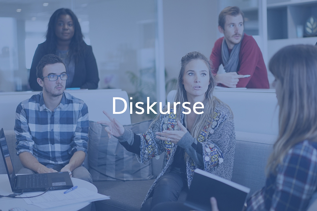 Diskurs Consulting Cover Diskurse